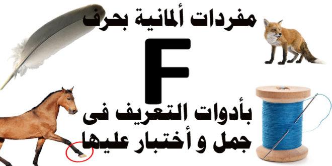 مفردات ألمانية بحرف F بأدوات التعريف فى جمل و أختبار عليها